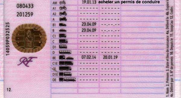 permis de conduire français par catégorie