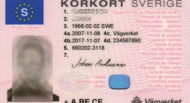 permis de conduire du Danmark